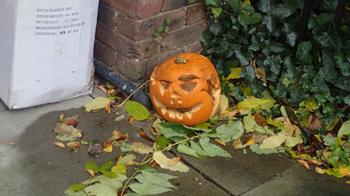 191103かぼちゃ.jpg